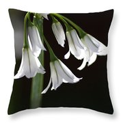Beauty Of The Snowdrops Throw Pillow