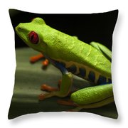 Beauty Of Tree Frogs Costa Rica 2 Throw Pillow
