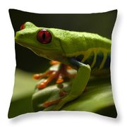 Beauty Of Tree Frogs Costa Rica 3 Throw Pillow