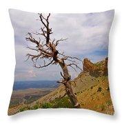 Beauty On High Throw Pillow