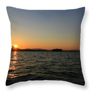 Beauty On The Refuge  Throw Pillow