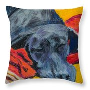 Beauty Rest Throw Pillow