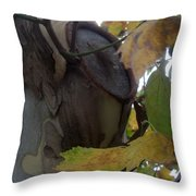 Beauty With Age Throw Pillow