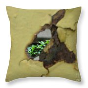 Beauty With-in Throw Pillow