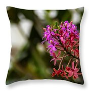 Beauty1 Throw Pillow