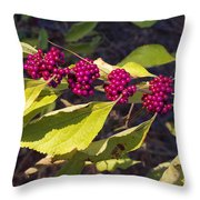 Beautyberry Throw Pillow