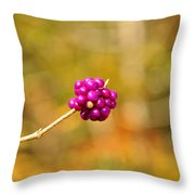 Beautyberry Throw Pillow