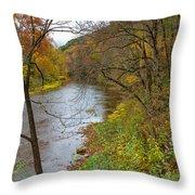 Beaver Creek State Park Throw Pillow