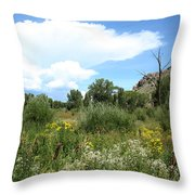 Beaver Creek Valley In Colorado Throw Pillow