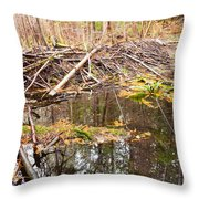 Beaver Dam In Fall Colored Forest Wetland Swamp Throw Pillow