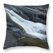 Beaver Falls Detail 1 Throw Pillow