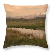 Beaver Lodge Throw Pillow