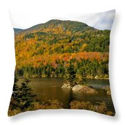 Beaver Pond Throw Pillow