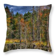 Beaver Pond Reflections Along The Highland Scenic Highway Throw Pillow