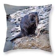 Beaver Sharpens Stick Throw Pillow