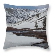 Beaver Valley Throw Pillow