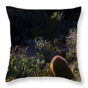 Bed Of Cactus Throw Pillow