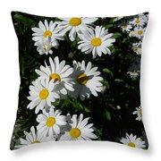 Bed Of Daisies Throw Pillow
