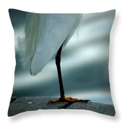 Bed Time Throw Pillow