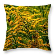 Bee And Goldenrod Throw Pillow