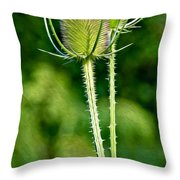 Bee And Teasel Throw Pillow