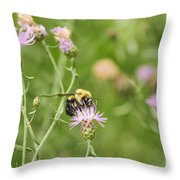 Bee And Thistle Throw Pillow