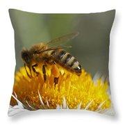 Bee At Work Throw Pillow