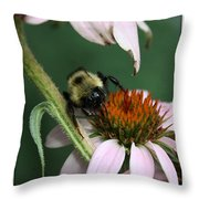 Bee Brunch I Throw Pillow