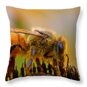 Bee Covered In Pollen Throw Pillow