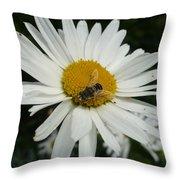 Bee Daisy Throw Pillow