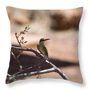 Bee-eater V15 Throw Pillow