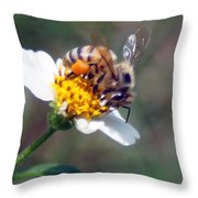 Bee- Extracting Nectar Throw Pillow