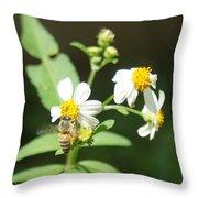 Bee-flower Pollen Throw Pillow