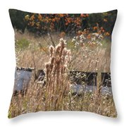 Bee Hives II Throw Pillow