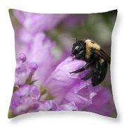 Bee Hug Throw Pillow