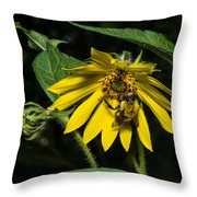Bee In A Wild Flower Throw Pillow