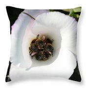 Bee-in Throw Pillow