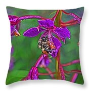 Bee In Hdr Throw Pillow