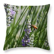 Bee In Lavender Throw Pillow
