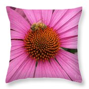 Bee In The Pink Throw Pillow