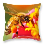 Bee Laden With Pollen 2 By Kaye Menner Throw Pillow