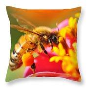 Bee Laden With Pollen Throw Pillow