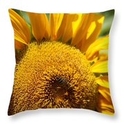Bee Lunch Throw Pillow