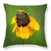 Bee My Coneflower Throw Pillow