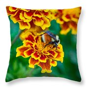 Bee My Friend Miss Marigold Throw Pillow