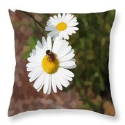 Bee On A Daisy Throw Pillow