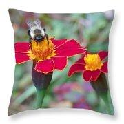 Bee On A Marigold 2 Throw Pillow