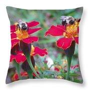 Bees On A Marigold 4 Throw Pillow