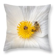 Bee On A Poppy Throw Pillow