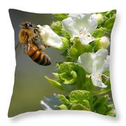 Bee On Basil Throw Pillow